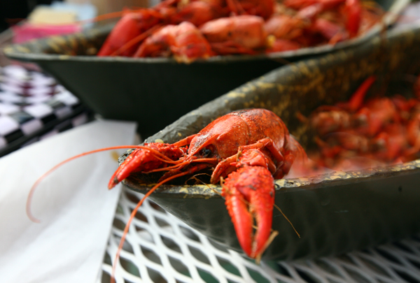 new_orleans_crawfish