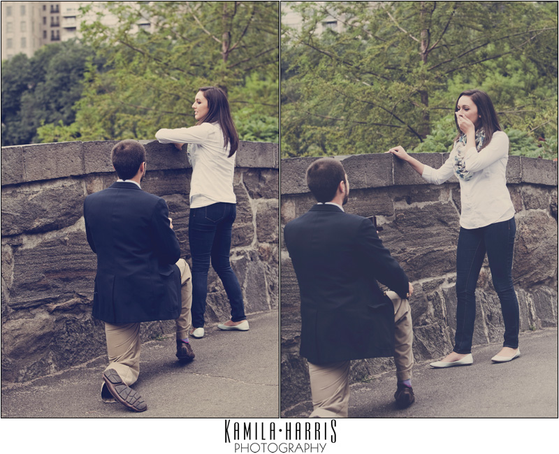 3 Amazing Central Park Marriage Proposal Ideas Hacks Proposal007.com