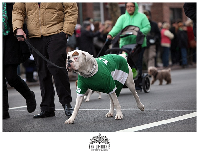 St Pat's, St Pat's for All, Sunnyside, NY, NYC, New York, Mayor DeBlasio, St Patrick's Day, Irish, Ireland, SUDS, Panti Bliss, Parade