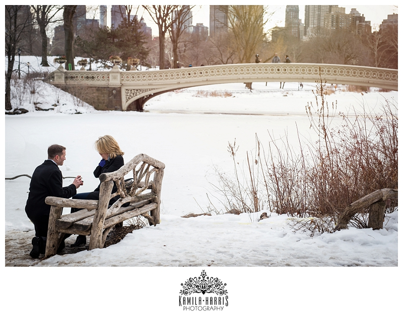 Surprise Proposal, Propose. NYC, NY, Central Park, Bethesda Fountain, Winter, New York City, How He Asked