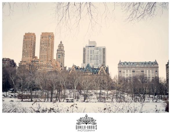 Bethesda, Bethesda Fountain, NYC, Central Park, New York, Winter