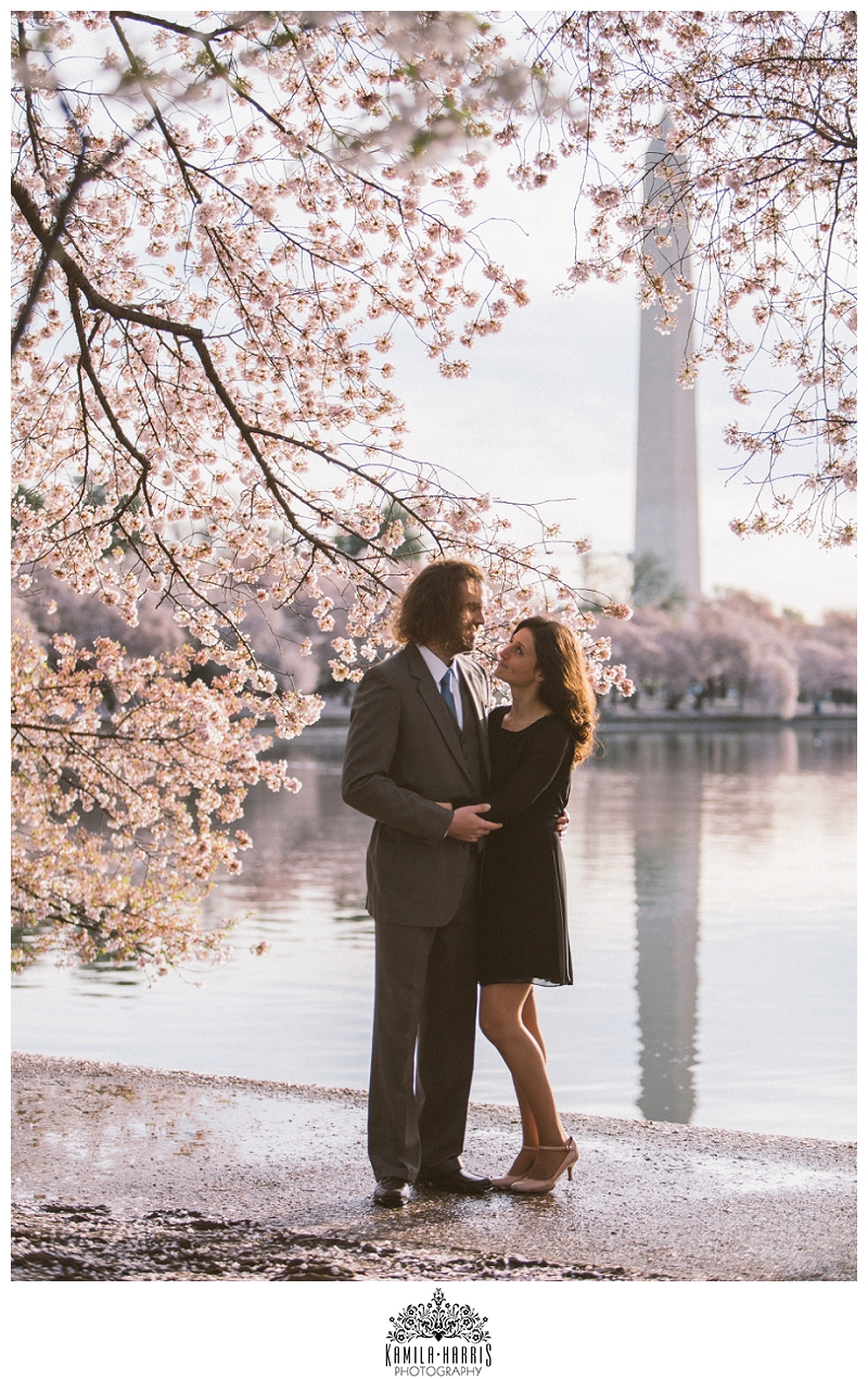 Washington DC Cherry Blossom Engagement Session